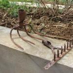 Les merveilles trouvées par Anne à la campagne: vieux rateau et vieux croc à fumier dont nous allons transformer l'utilité !!