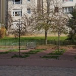 <b>jardin avant 1</b> <br />
