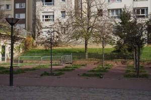 jardin avant 1