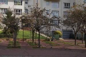jardin avant2